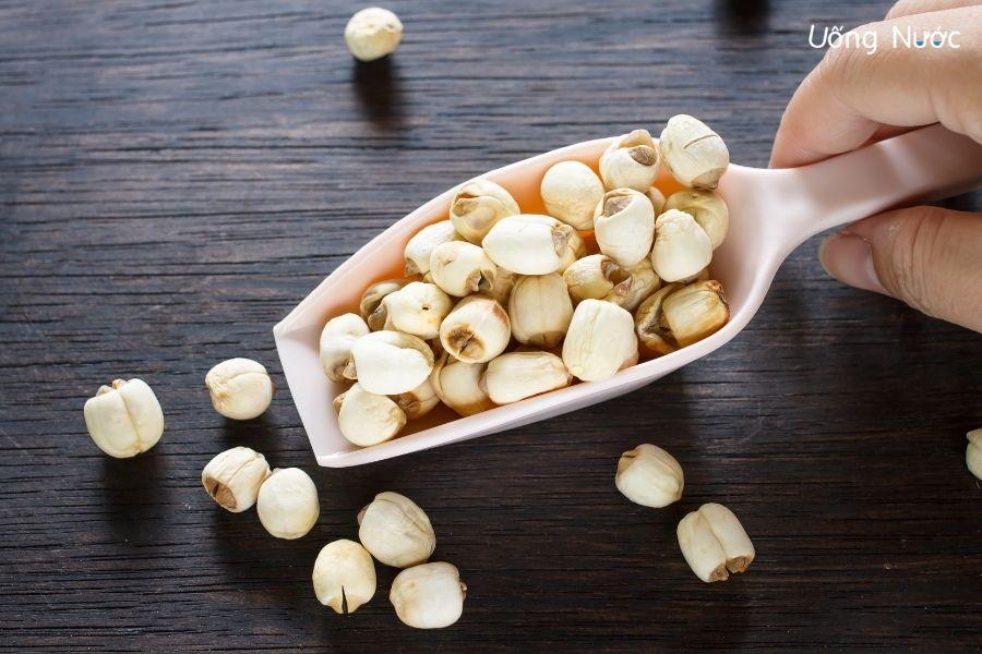 Hạt sen bổ dưỡng, đặc biệt phù hợp với người thiếu chất, suy dinh dưỡng